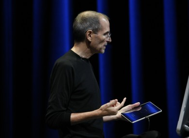 Steve Jobs believes Apple's iPad has the 'tiger by the tail' in the tablet market.