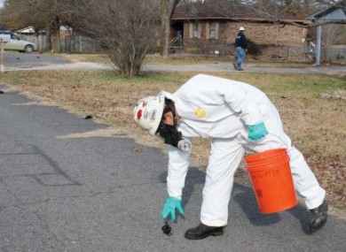 A worker with US Environmental Services, a private contractor, picks up a dead bird in Beebe, Arkansas, on Saturday.
