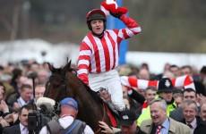 No Cheltenham return Forpady this year