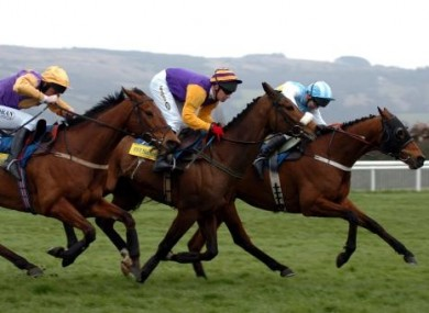 Hardy Eustace (right) hangs on to beat Harchibald (centre) and Brave Inca (left) in the 2005 Champion Hurdle.