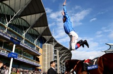 Five Steps to Heaven: Cheltenham Special