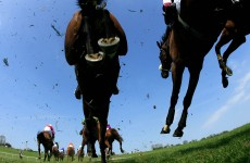 Mark Your Card: Grand National day at Aintree