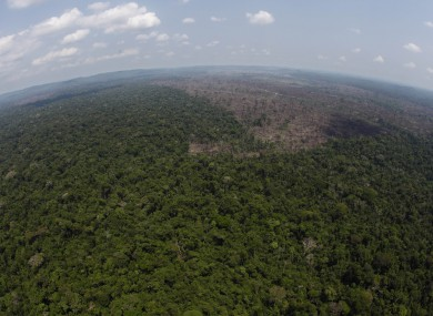 A deforested area is seen near Novo Progresso in the northern state of Para on Brazil. (File photo)