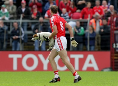 Alan O'Connor shows Cork's 16th man the way to the sideline.