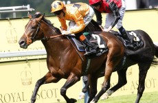 Canford Cliffs heads for Coolmore as injury forces retirement