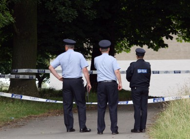 The body was found off Military Road in the Phoenix Park on 5 August 2009