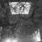 Installation by Wilfredo Prieto, 2011.