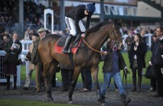 Not done yet: Ruby Walsh guides Kauto Star to brilliant win