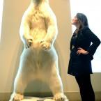 A taxidermied polar bear. (2009 auction)