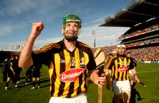 Cats to do without Shefflin for entire league campaign