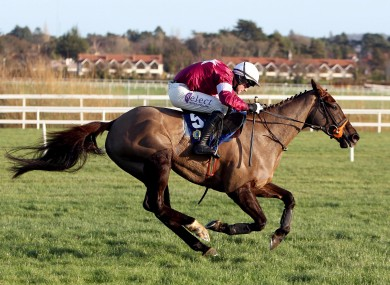 Last Instalment, en route to winning that Fort Leney Novice Steeplechase at Leopardstown last Christmas.