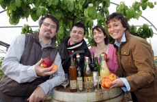 """Food sector """"pivotal in Irish tourism"""""""
