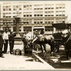 Watering horses on a hot day in July 1911. (Library of Congress, Prints & Photographs Division)