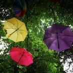 (Image: Stephen Kilkenny/LightCurvePhoto)