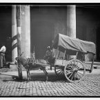 A merchant selling coconuts in Havana, between 1890 and 1910. (Library of Congress, Prints & Photographs Division)