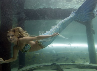 'Hanna the mermaid' at the Mermaid Lagoon at Sydney Aquarium. We think there might be something fishy about tha