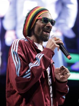 Introducing... Snoop Lion