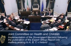 10 interesting moments from the Oireachtas hearings on abortion