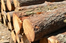 Column: Upcoming EU timber reg