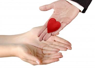 Image result for organs donation after death