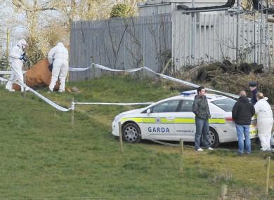 Gardai at the scene in Balheary near Swords, Co Dublin.