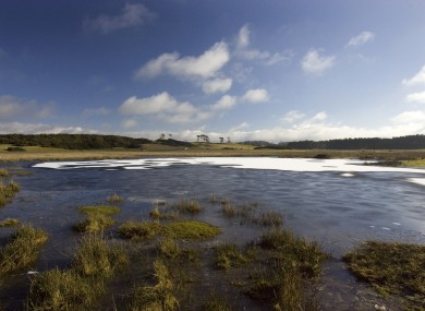 The partially ice covered Lough Ban ( The White Lake), in the morning light on the Curragh Plains in County Kildare