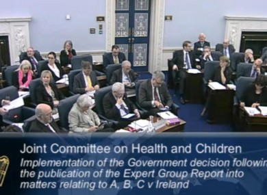 The Oireachtas Health and Children Committee hearings on abortion in January
