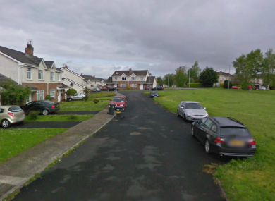 It was claimed that students had deliberately thrown a ball over a road in College Court Drive, near the University of Limerick, to