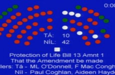 Senators vote against fatal foetal abnormalities amendment
