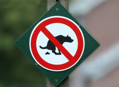 paris-cctv-dog-poo-390x285.jpg