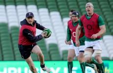 Schmidt's energy to push Ireland to win over Samoa