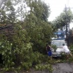Residents clear the road after a tree was toppled by strong winds and damaged a van.<span class=