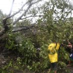 Residents clear the road after a tree was toppled by strong winds.<span class=