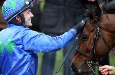 Winners alright: 7 Irish horses that got us talking in 2013