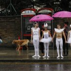 Human-rights-campaigning ballet dancers wait to cross a road to protest outside the Russian Embassy in London calling for an end to Russian President Putin's crackdown on human rights and demanding the end to his assault on freedom of expression and gay rights in Russia.<span class=