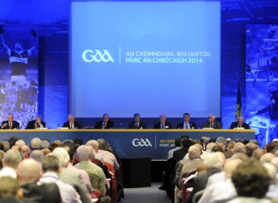 Delegates at GAA Congress.