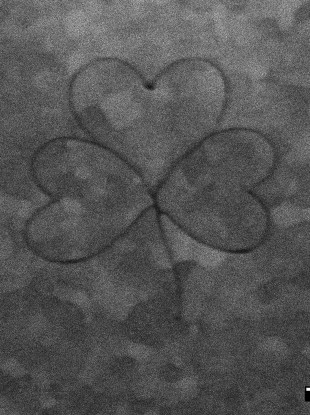 The shamrock was etched on one of the harp strings on the pin, each one is 150 micrometres wide.