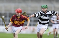 Two brothers will be in opposition in tomorrow's All-Ireland schools hurling final in Kilkenny