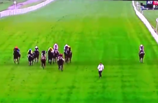 A very stupid man decided to run with the horses at Leicester Races yesterday