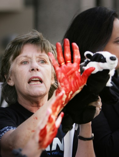 Pictures: Animal rights protesters think Simon Coveney has 'blood on his hands'