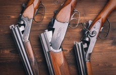 355 guns stolen in Ireland last year – and 53 reported lost