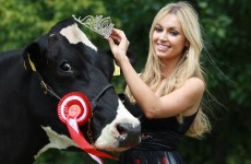 Irish dairy farmers are mad at Rosanna Davison for telling people to go vegan