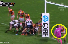 Gigantic Kiwi prop Tameifuna cited for pushing referee to the ground