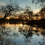 Trees are silhouetted at sunset at the Bolam Lake Country Park, Northumberland, as the unseasonably mild weather continues. <span class=