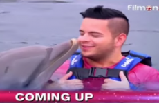 Simon Cowell pulls dolphin scenes from this week's X Factor