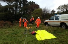 Relax everyone… The lone puppy trapped in a mineshaft in Cork has now been rescued