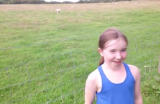 This sheep has the absolute perfect comedic timing