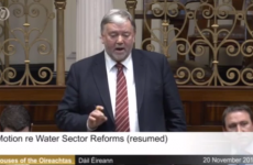 Fine Gael TD says Dublin protesters 'act like parasites and live off country people'
