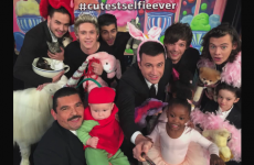 One Direction took the #CutestSelfieEver on Jimmy Kimmel, and damn near broke the internet