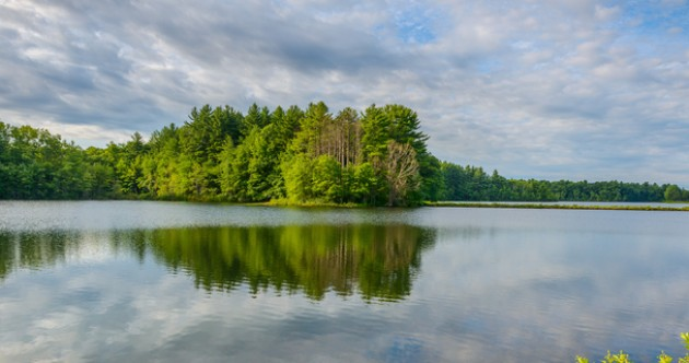 A virus found in lakes could be literally changing the way people think